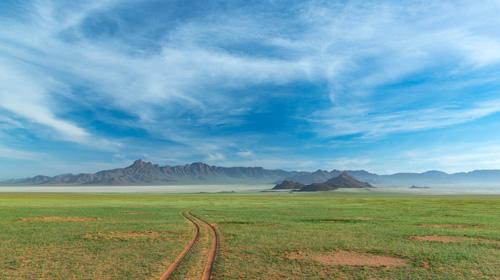SA Resident Safaris